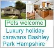 Pet Friendly Luxury Caravans Hoburne Bashley Park